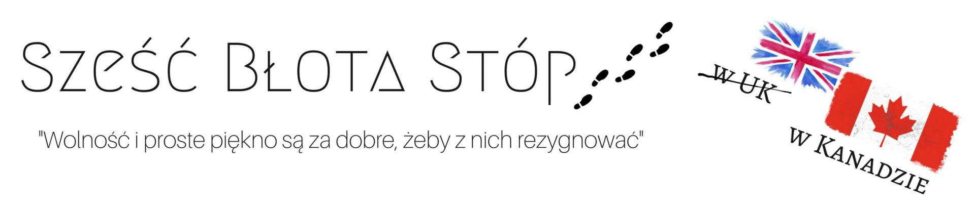 Sześć Błota Stóp   szescblotastop.com